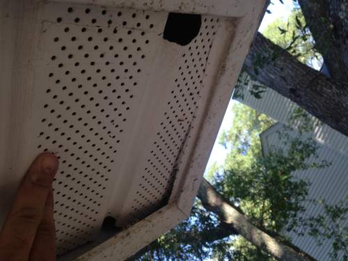 Charleston Rodent Proofing Soffit Vents Animal Pros