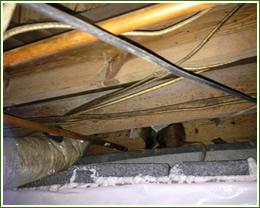 crawl space and attic restoration
