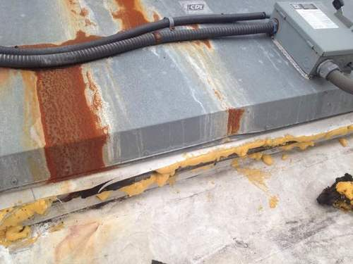 Memphis Rodent Proofing Metal Roof Openings Animal Pros