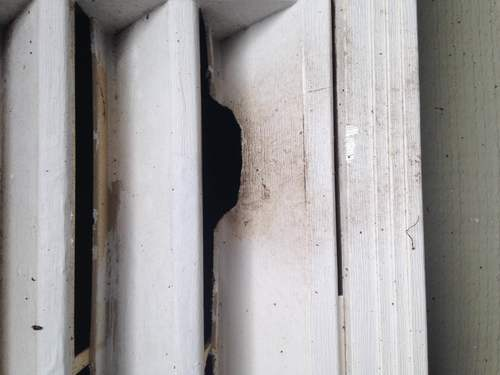 Rodent Proof Attic Vents in Nashville
