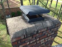 bird chimney cap