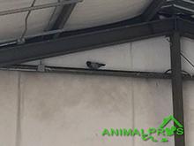 bird warehouse