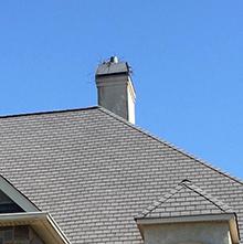 birds chimney