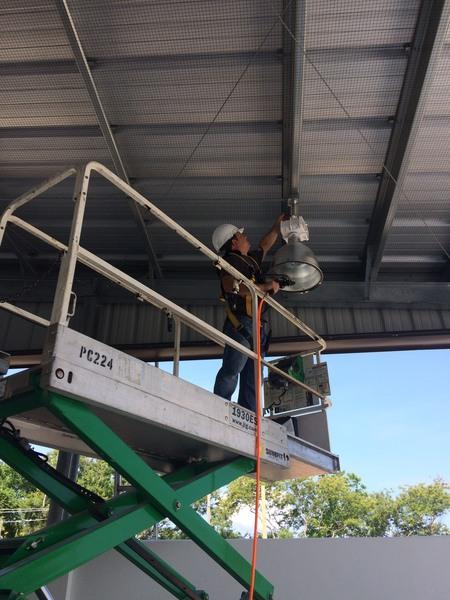 Bird Control For Hangars | Animal Pros